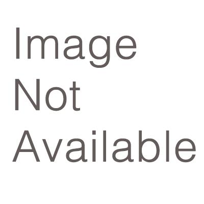 Pca Council Meets In Scranton Pa 2015